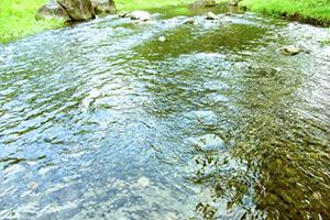 ★水★ 自由。敏感。直観。触覚。流れる。柔軟性。明るさ。怖れる。